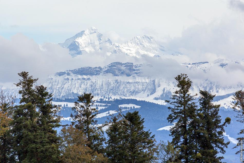 Горы Mittelhorn (3704 метра) и Bärglistock (3656 метров). Наверное. На табличку с названиям гор было жалко батарейку.