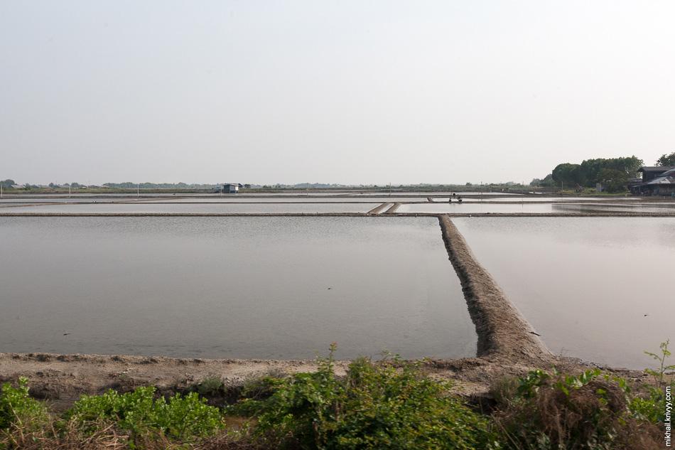 Солевые пруды. Сюда загоняют морскую воду и выпаривают ее. Таким образом Таиланд производит 1 млн. тонн соли в год.