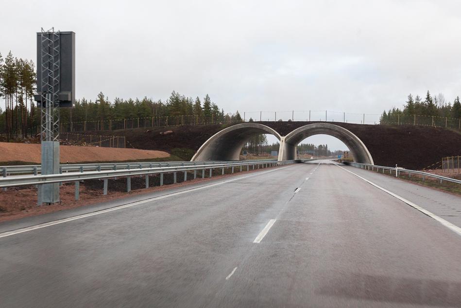 Переход для диких животных. На открытых участках он один. Еще один точно будет в районе Ловийсы (Loviisa). Участок от ГЭС Ловийса до заправки ABC в районе деревеньки Pyhtää.
