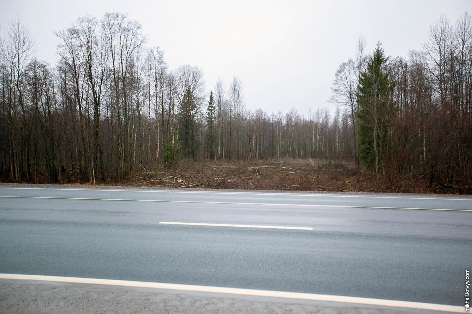 """С другой стороны автодороги М10 """"Россия"""" только начинают расчищать просеку к существующему газопроводу."""