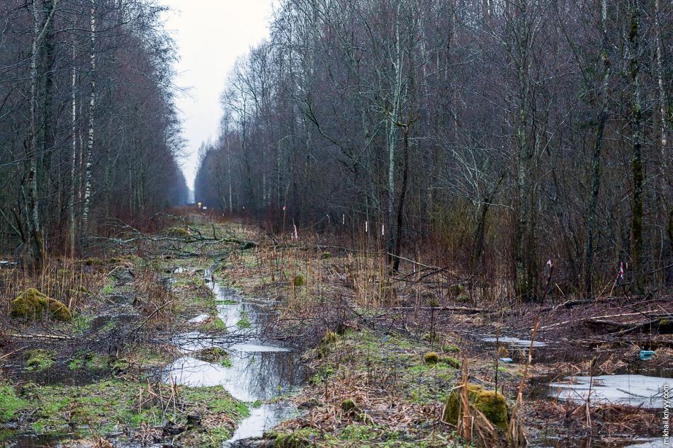 """А вот так выглядит сам газопровод. Они идет с западной стороны от М10 """"Россия"""", примерно в 150 метрах."""