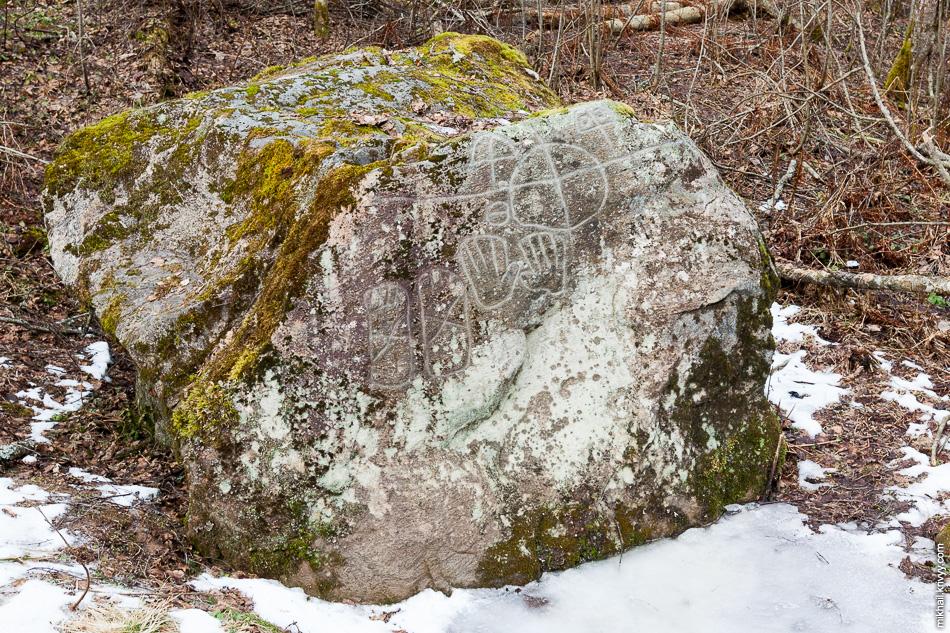 Щеглец является самым известным культовым камнем Новгородской области. По оценке исследователя А. А. Формозова возраст петроглифов относится к позднебронзовому веку — II—I тысячелетие до н. э.