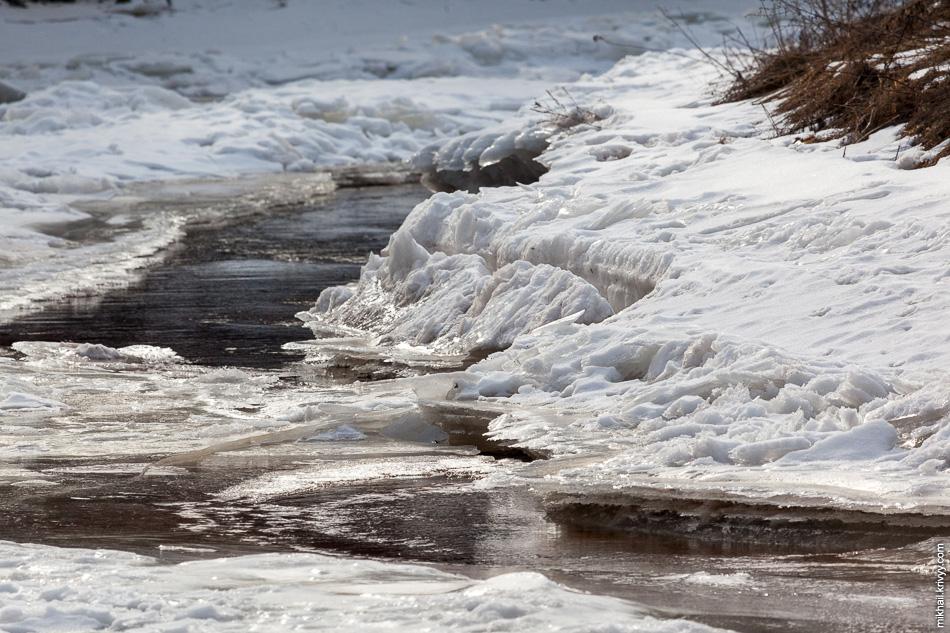 Река Вишера. Лед уже начал таять. Снега в лесу нет.