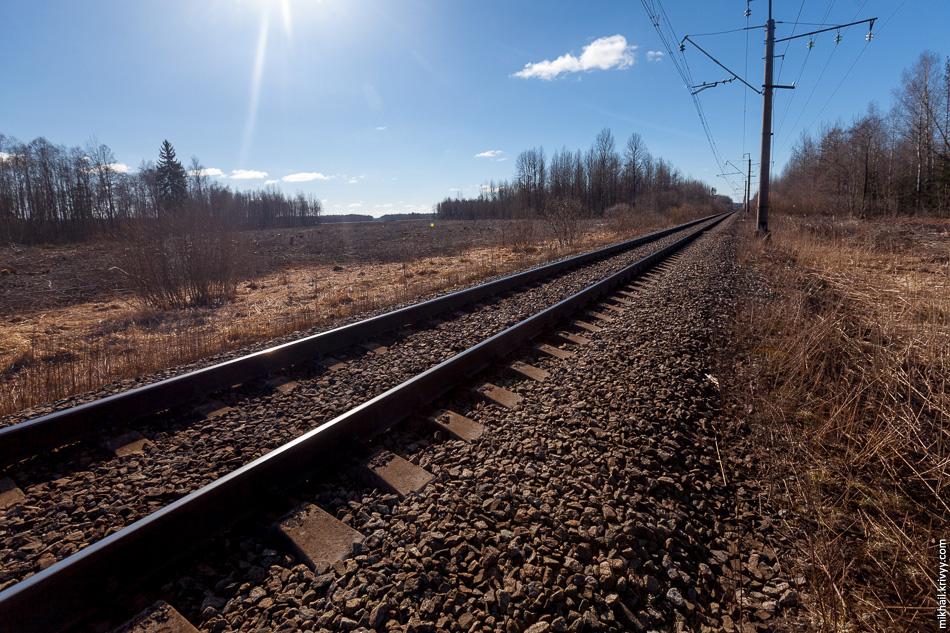 11. Вид в сторону Москвы с железной дороги Чудово - Новгород.