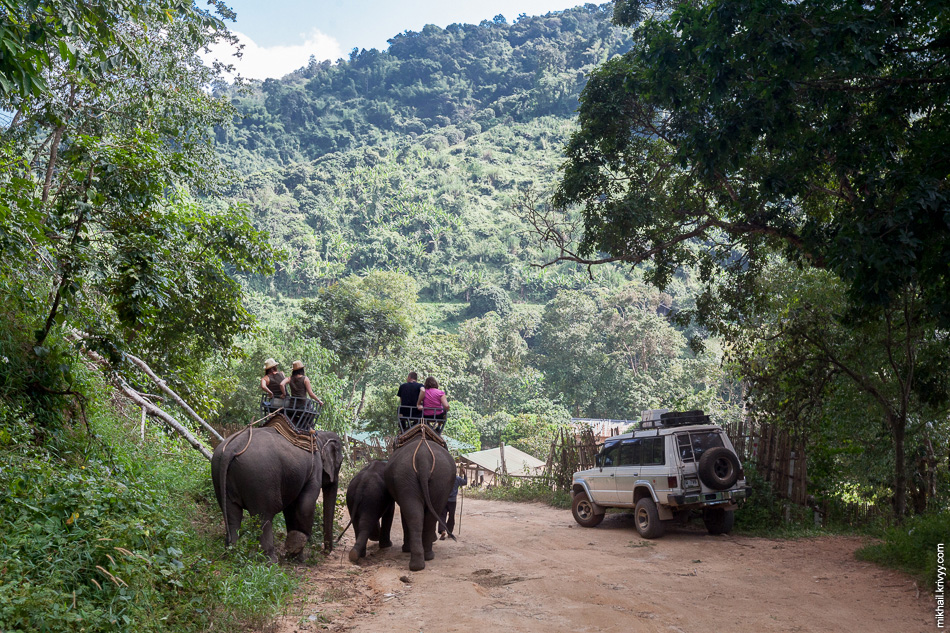 Вдоль грунтовки располагались слоновые фермы. Основное назначение слонов на фермах - катать туристов.