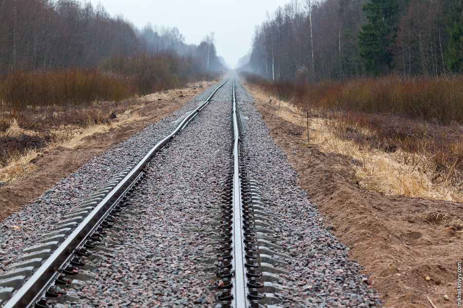 Кересть, вид в сторону Новгорода.