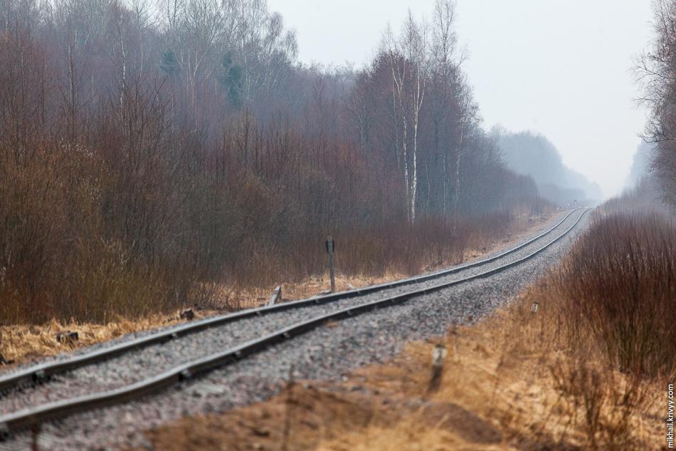 Железная дорога Новгород - Новолисино. Район о.п. Кересть (126 км.).