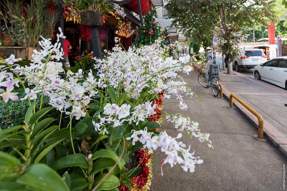 Одно из уличных кафе в центре Чиангмай.