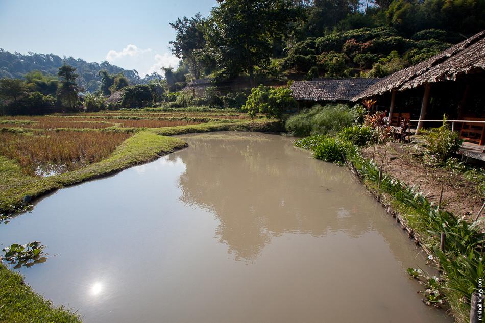 Система орошения рисовых полей. Туристическая деревня Ban Tong Luang.