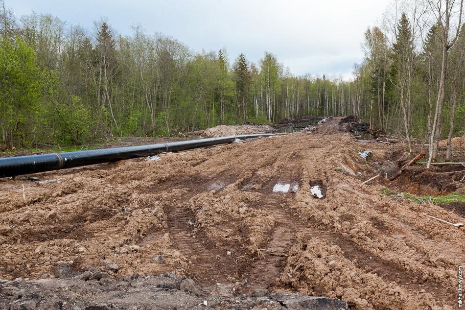 Северная часть обхода газопровода в районе 543 км.