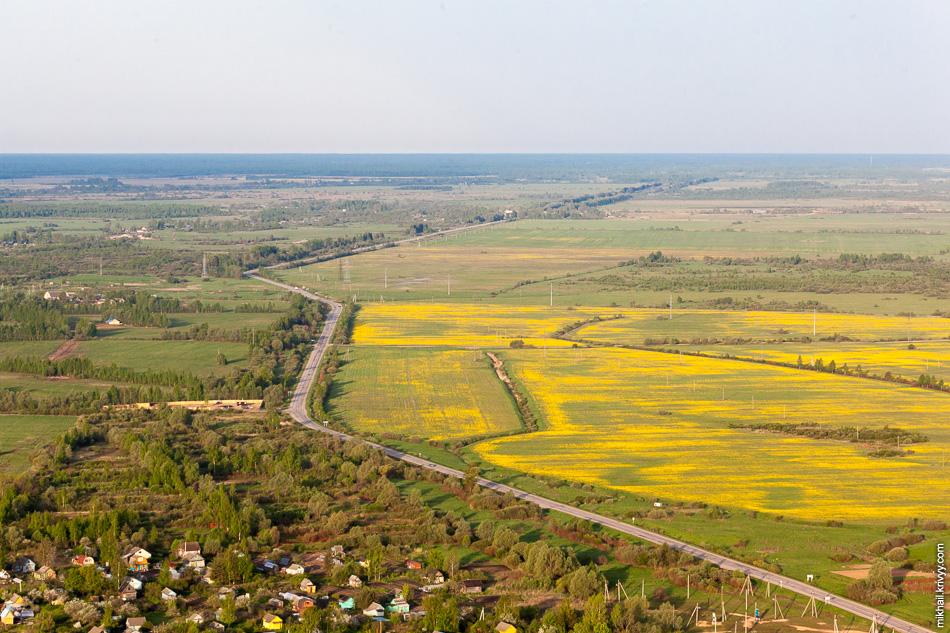 Дорога Старая Русса - Волот и, судя по всему, поля с рапсом. Первый раз вижу рапс в наших краях. Из рапсового масла делают биотопливо.