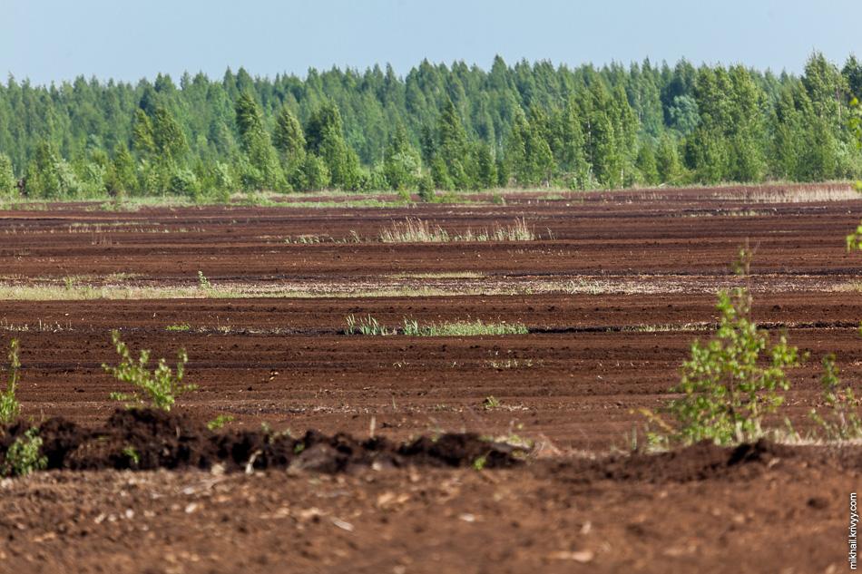 Торфоразработки. Бесконечные поля - малая часть былого величия.