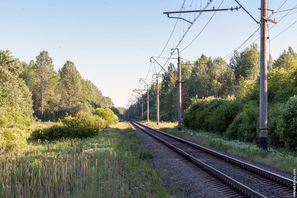 Солнце выдает место пересечения просеки под автомагистраль М11 с железной дорогой Чудово - Новгород. Через пару лет на этом месте будет построен путепровод.