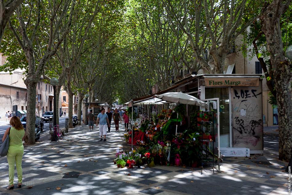 Местная Рамбла. Действительно очень похоже на Барселону. Местную и Барселонскую Рамблы отделяют всего 200 км. Балеарского моря (часть Средиземного моря)