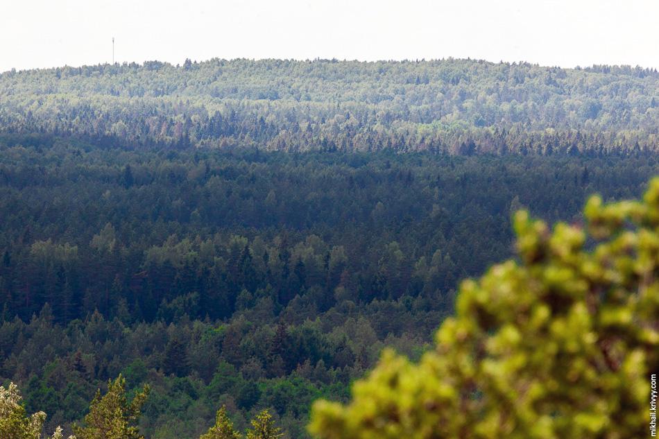 Смотришь сверху, одни леса. Едешь по дорогам, одни поля.