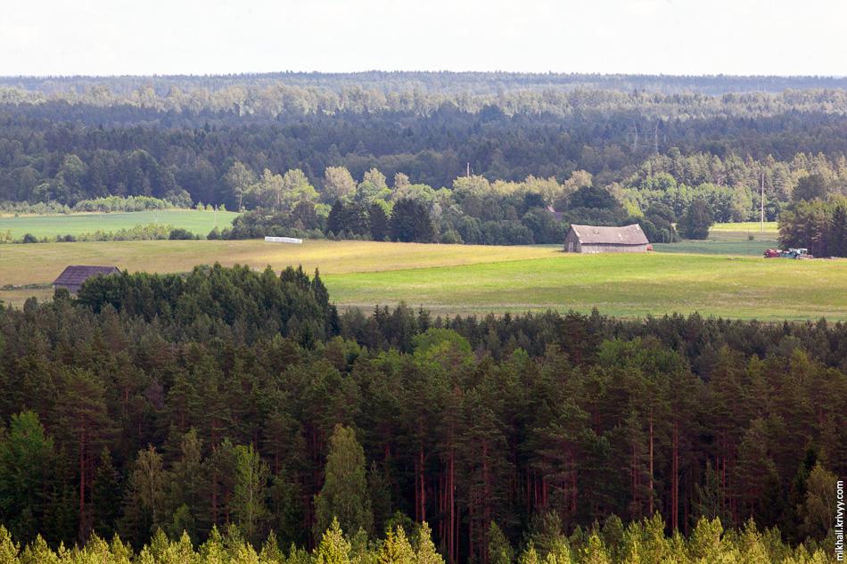 Вот такая она, северная Эстония. Вид с вышки комплекса Valgehobuse.