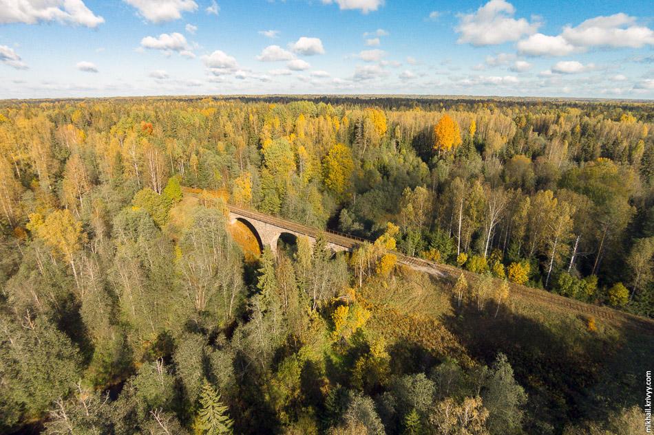 Мост через реку Ярынья. Крестецкий район.