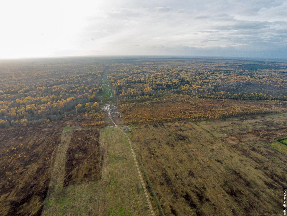 Просека на пересечении с автодорогой Новоселицы - Папоротно (524 км). Фотография месячной давности, но там ничего не изменилось.