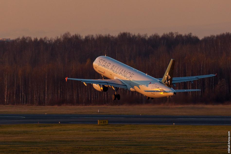В Пулково в это время года просто великолепно. Весь день закат и никаких атмосферных искажений. TC-JRB, Airbus A321, Turkish Airlines.