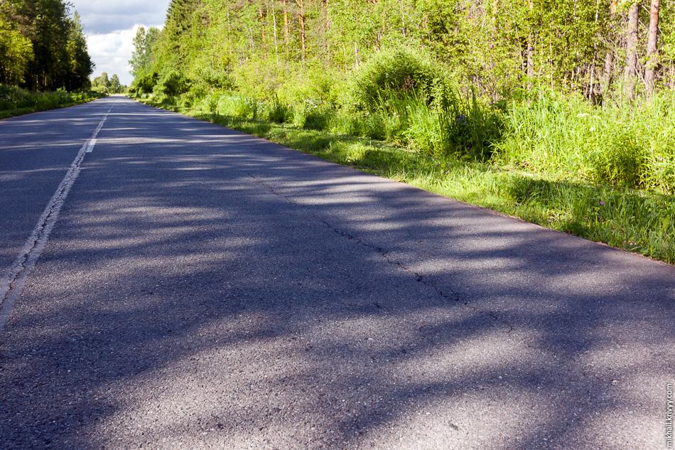 Начинает рассыпаться дорога Новоселицы - Папоротно. До начала строительства от Новоселиц до Мытно она была в хорошем состоянии. Первый признак разрушения от перегруза - продольные трещины по краям правого колеса самосвала.