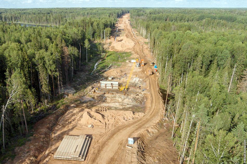 В районе озера ведется строительство зверопрохода.