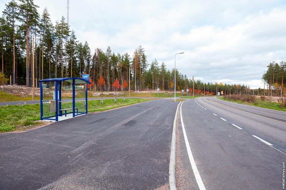 Автобусы местного значения пересекают автомагистраль по путепроводу и останавливаются вот на этой остановке.