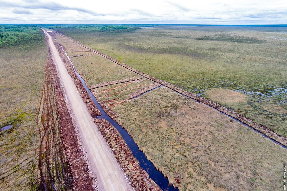 Казалось бы, можно было бы обойти болото. На там аккурат по траектории автомагистрали распложено русло болотной реки Кересть.