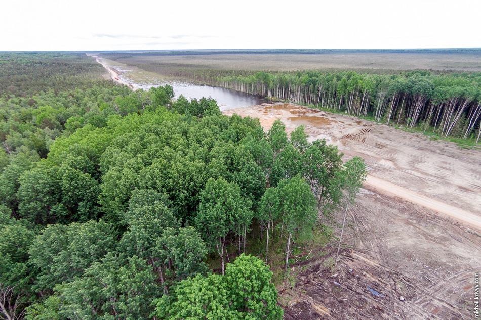 В месте где болото упирается в остров просека автомагистрали превратилась в реку. Тут стоить отметить, что в регионе третья сухая весна подряд. Это очень большая редкость и огромное везение.