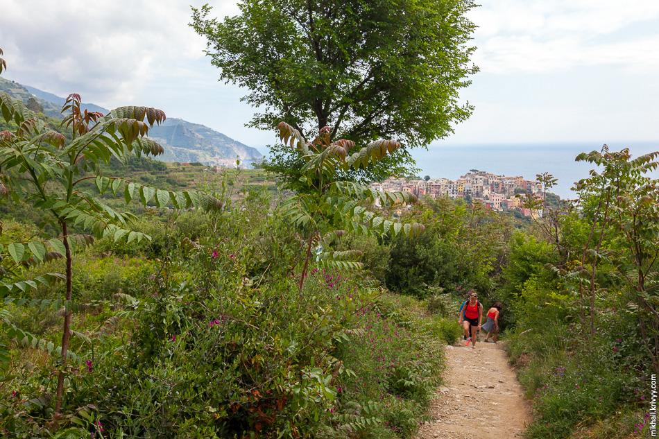 Мы его быстро проскочили и пошли пешком к следующему городу - Вернацца (Vernazza).