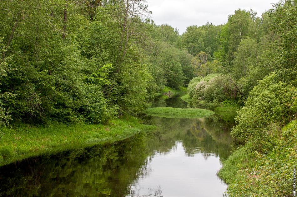 Это река Кересть. Очень нетипичный пейзаж для этих мест. Река вытекает из Тёсовских болот, неподалёку от истоков реки Луга. Впадает в Волхов в районе села Грузино.