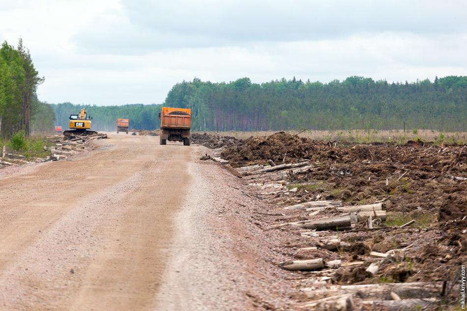Гать — дорога через болото или затопленный участок суши, настил через трясину. Гать делается из брёвен, уложенных обычно поперёк движения.