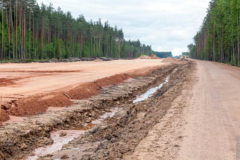 Вполне себе проходимый сосновый лес. Км. 560, вид в сторону Москвы.