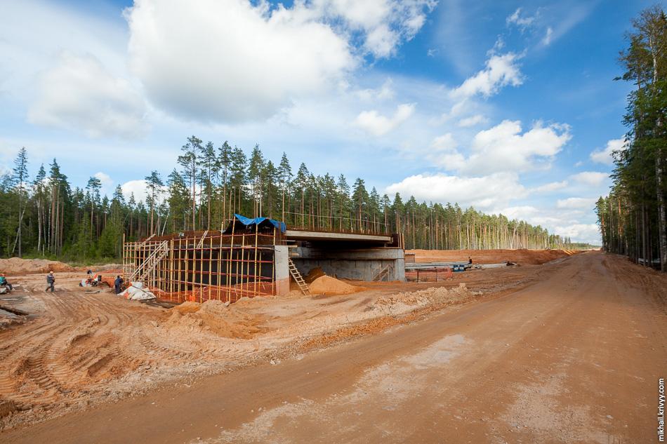 19. Мост через ручей Витошный на 515 км. Это самый распространенный тип искусственных сооружений на будущей автомагистрали. На участке от 479 до 524 км семь таких вот одинаковых путепроводов, а всего искусственных сооружений — 20.