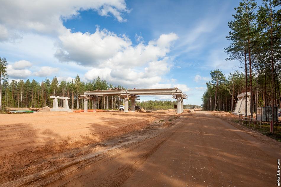 21. Строительство путепровода на пресечении с лесной дорогой в районе деревни Любитово. Этот путепровод будет использоваться преимущественно лесозаготовительной техникой. Из всех путепроводов над автомагистралью этот в наименьшей степени готовности. 513 км.