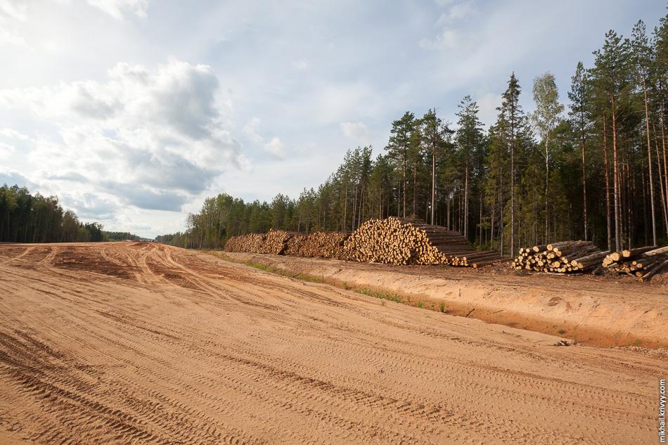 31. Лесозаготовительные работы в этом районе не прекращаются.