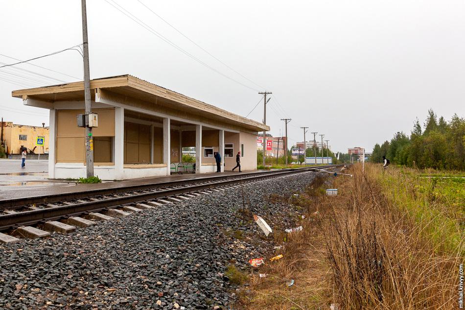Пассажирская платформа в районе Эжва. До этого места я не разу не видел платформу на которой останавливаются поезда дальнего следования.