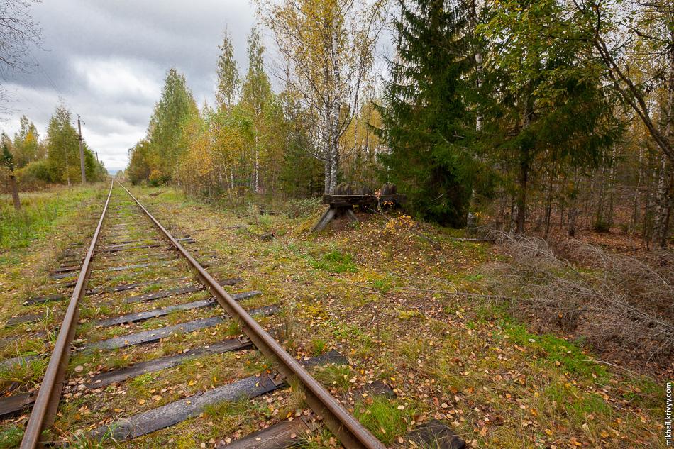 6. Бывшая чётная горловина станции Вомпе в Комарово.
