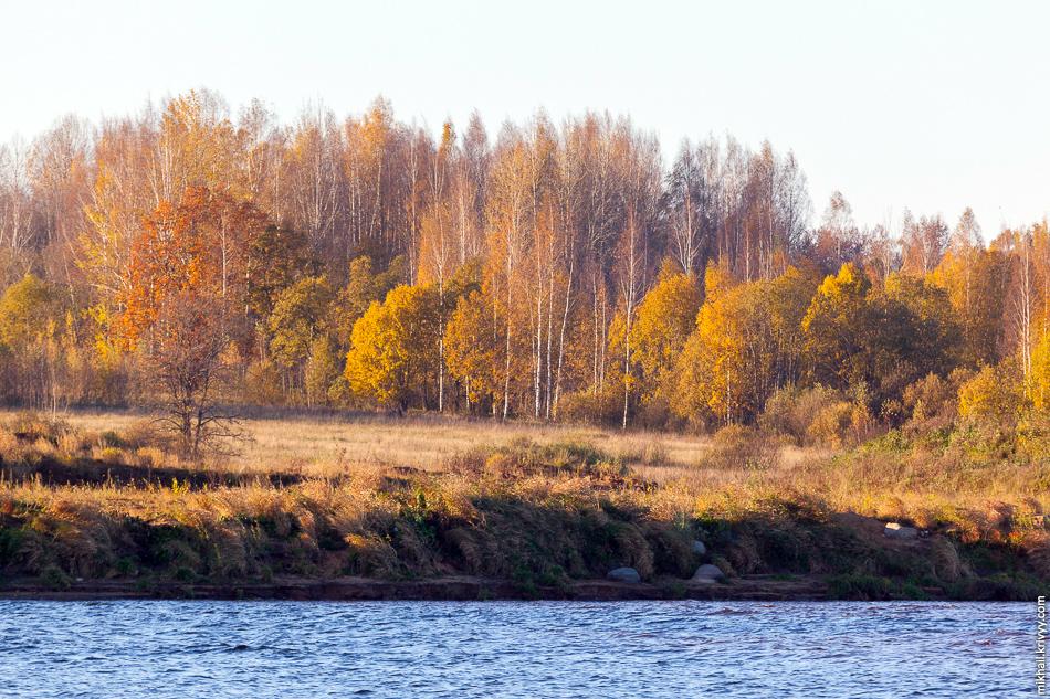 Место бывшей усадьбы Рахманинова «Онег». Писали, что там начались работы по разминированию территории.